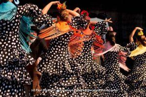 Flamencodots